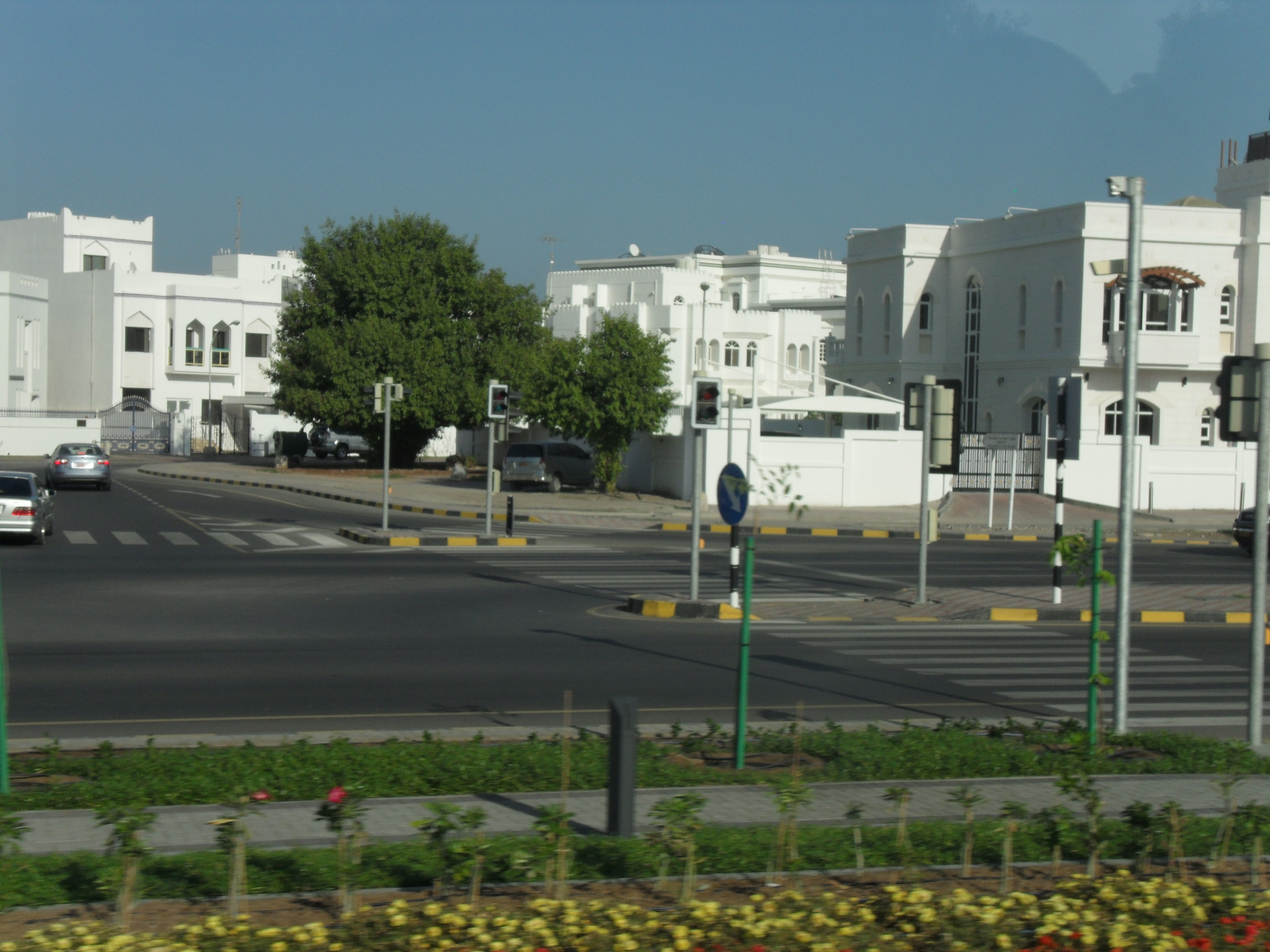 Muscat, Oman's City in White   The Smart Traveler Guide