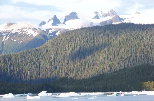 Glacier Bay, Gustavus Alaska Activities & Trips